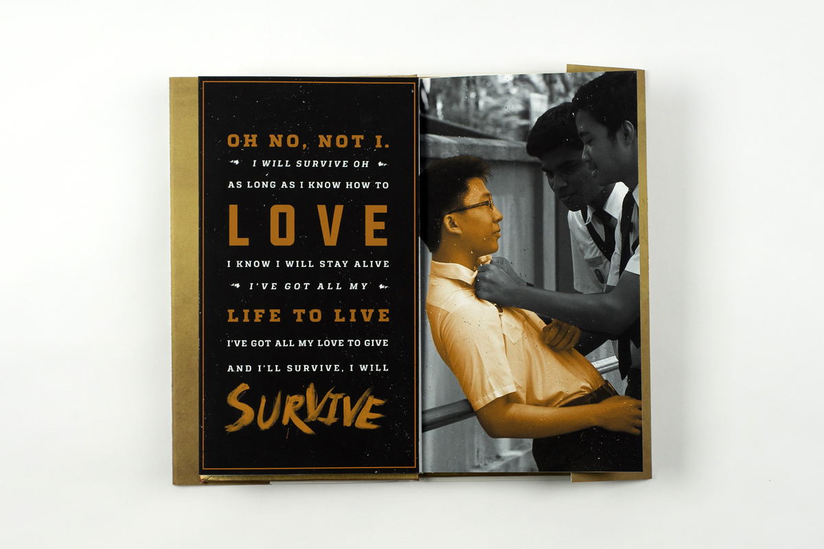 I-Will-Survive-Book-22-Thanh-Nguyen-design