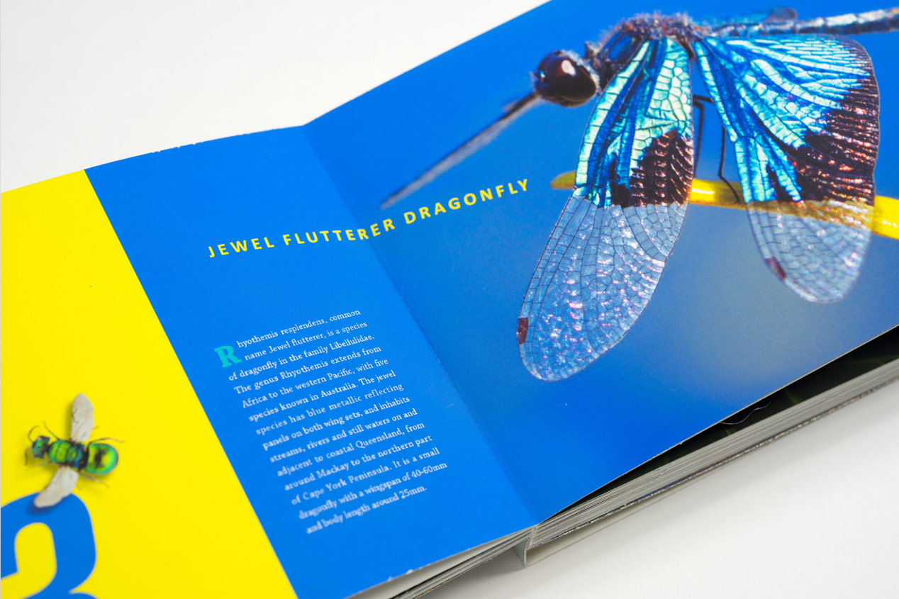 Iridescent-Creatures-catalog-13-1-Thanh-Nguyen-design