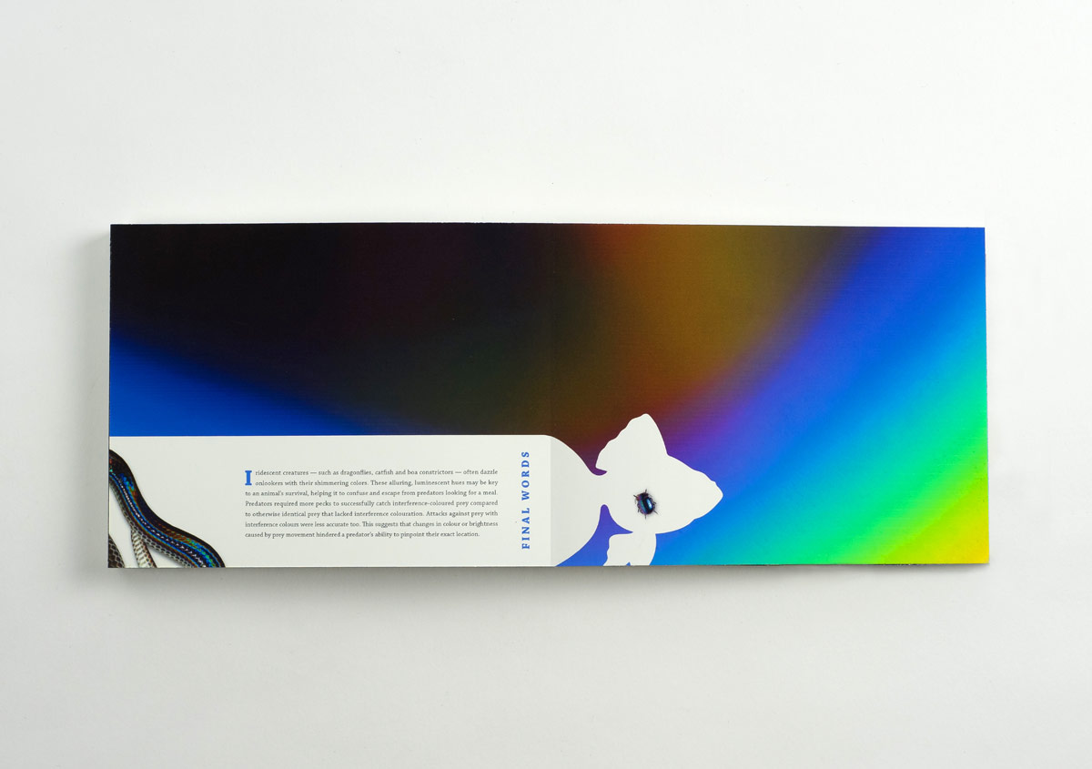 Iridescent-Creatures-catalog-38-Thanh-Nguyen-design