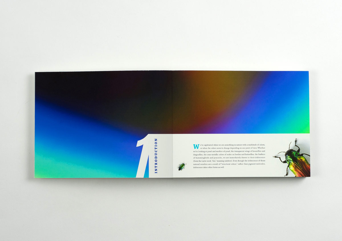 Iridescent-Creatures-catalog-4-Thanh-Nguyen-design