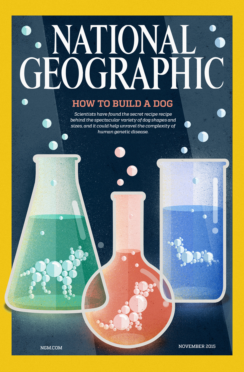National Geographic Cover. How to Build  Dog